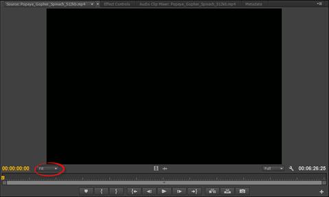 Adobe Premiere: Using the Source Monitor | UniversalClass