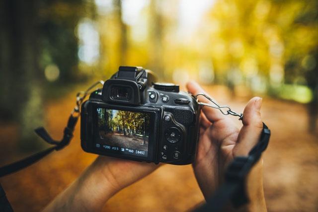 Online Class : Digital Photography 101