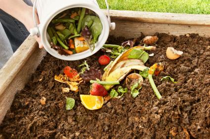 Gardening Picture